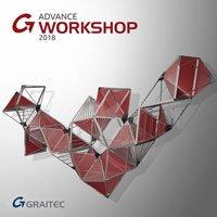 GRAITEC Advance Workshop